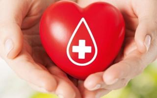 Внимание – донорство